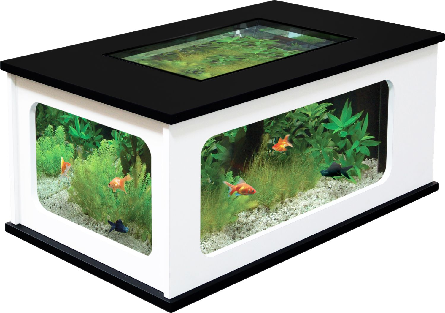 La table basse de la plus insolite la plus rustique - Table basse aquarium design ...